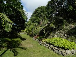World Botanical Gardens Orchid World Botanical Gardens Barbados Mapio Net