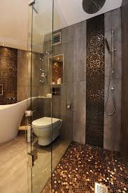Decorative Bathroom Tile by Decorative Bathroom Tile Copper Concrete Walls And The Floor On