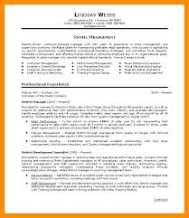 professional summary exles for resume professional summary on resume exles foodcity me