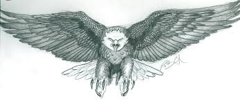 57 eagle tattoos ideas with meanings