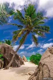 seychelles travel pinterest