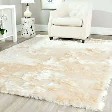 Area Rugs Menards Best Priced Area Rugs Discount Area Rugs Toronto Familylifestyle