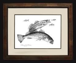 pencil art illustrations steve whitlock game fish art u2013 steve