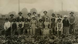 how japanese and mexican american farm workers formed an alliance