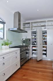 cabinet bamboo cabinets kitchen perfect bamboo kitchen cabinets