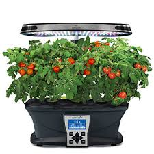 best planters tnhc the best indoor smart garden systems and smart planters