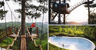 Treehouse Fostering Agency - man quits city job to live inside this incredible giant treehouse