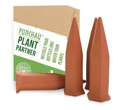 amazon com terracotta plant waterer perfect for vacation plant