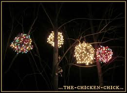 manificent decoration light the chicken wire