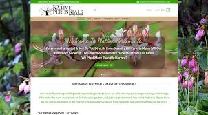earth tones native plant nursery website design blog website design u s a website u0026 graphic design