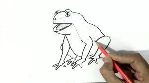 how to draw a frog in easy steps for children kids beginners