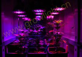 led marijuana grow lights led grow light apply projects grow marijuana lights projects