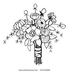 wedding flowers drawing flowers bridal bouquet vector stock vector 575319889
