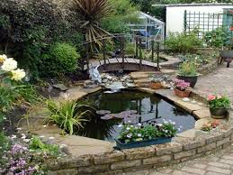graceful impression startling small backyard ponds and