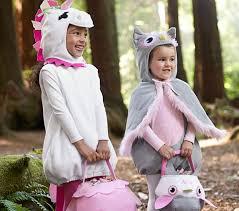 Owl Halloween Costume Adults Owl Costume Pottery Barn Kids