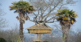 chambres dans les arbres château du val chambres d hôtes insolites cabanes perchées dans
