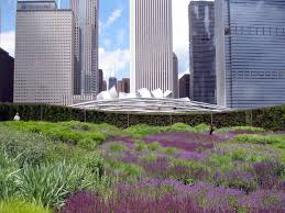 city in a garden u2022 lakeshore magazine