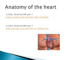 Heart Anatomy Youtube Arteries Largest Blood Vessel Carries Blood Away From The Heart