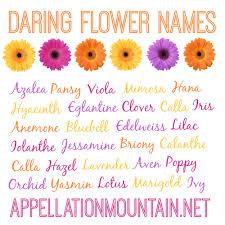 List Of Flowers by Flowers Yellow Flowers Names Cool Wallpaper Scientific Flower