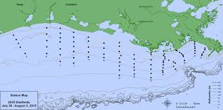 Northern Mexico Map by Northern Gulf Of Mexico Shelfwide Hypoxia Cruise U2013 Thrash Lab
