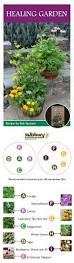 15 best edible container gardens images on pinterest salisbury