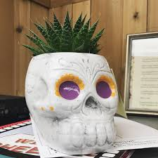 Pier One Planters by Skull Planters From Trader Joe U0027s Fall 2017 Popsugar Home