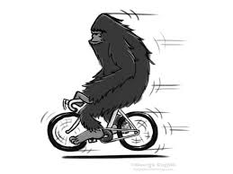 bigfoot on a bicycle cartoon sketch coghill cartooning