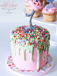 first birthday cake u2013 thenovelbaker com