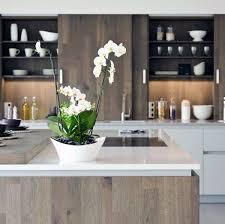 open kitchen cabinet design ideas top 70 best kitchen cabinet ideas unique cabinetry designs