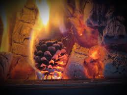 cinnamon scented pine cones