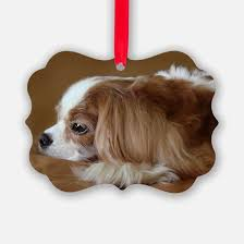 black and cavalier king charles spaniel gifts merchandise