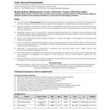Resume Companies Resume Writing Services Cv Writing Services Cv Preparation