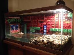 Beautiful Home Fish Tanks by Best 25 Turtle Aquarium Ideas On Pinterest Aquarium Ideas Fish