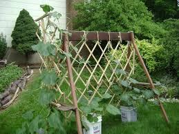Make Your Own Cucumber Trellis 260 Best Trellis Images On Pinterest Gardens Vegetable Garden