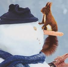 squirrel wwf animal charity cards snowman pack 10