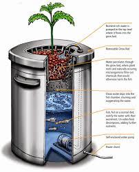 aquaponics system design growing power backyard aquaponics