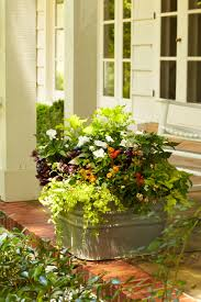 Galvanized Containers For Gardening Front Door Container Gardens Southern Living