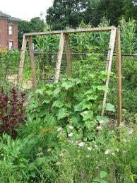 Garden Trellis Design by Garden Trellis Ideas Pictures Native Garden Design