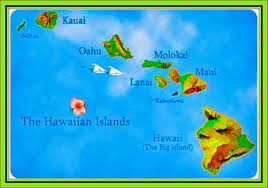 Map Of Hawaii Island Knoxville Travel Agent Travel Agency Luxury Travel