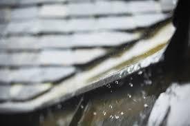vergleichen zahlt sich aus die wie sind schäden durch regenwasser versichert vs vergleichen