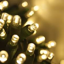 amber mini led christmas lights 60 light led miniature christmas lights set clear moshells