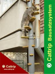 katzenleiter balkon katzenleiter balkontreppe katzentreppe cattrip in marburg tiere