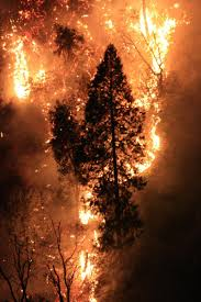 Wildfire Columbia Gorge Oregon by Fire Forces 70 Evacuations In Columbia Gorge Northwest Public Radio
