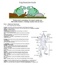 internal anatomy of a frog images learn human anatomy image
