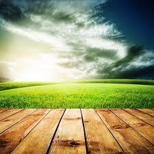 green hardwood flooring macdonald hardwoods denver co