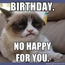 Funny Birthday Meme Generator - grumpy cat birthday meme generator birthday no happy for you