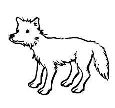 imagenes de animales carnivoros para imprimir dibujos de lobos para colorear lobopedia