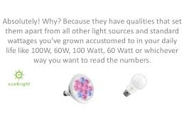 why led light bulbs are worth the price