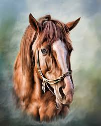 home interior horse pictures decor horse portrait for horse artwork ideas and home interior