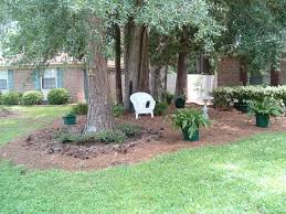 Landscaping Ideas For Big Backyards Landscaping Under Large Pine Trees Gardening Pinterest Pine